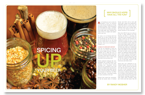 Spicing Up Your Beer