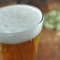 Hopback_featured